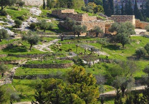 כפר נצרת